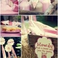 Pink Girly Farm Barnyard Barn Themed Birthday Party Planning