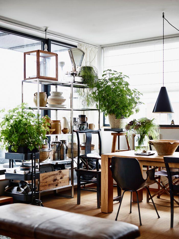 Organized clutter Flower RoomScandinavian Interior 174