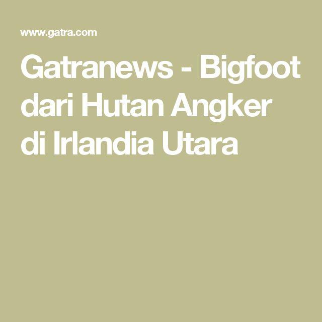 Gatranews - Bigfoot dari Hutan Angker di Irlandia Utara