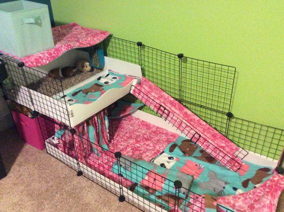 17 meilleures id es propos de cochon d 39 inde sur. Black Bedroom Furniture Sets. Home Design Ideas