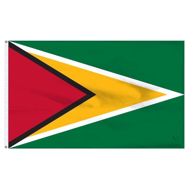3X5 Guyana Flag 3'X5' House Banner Brass Grommets Super Polyester