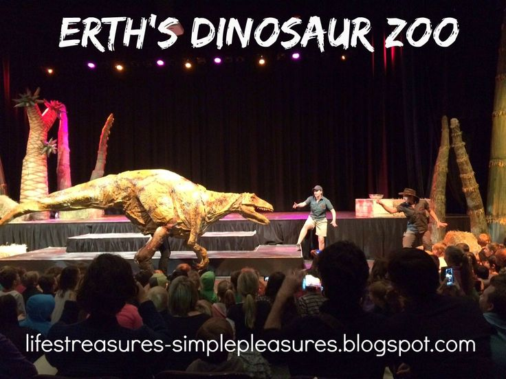 Life's Treasures & Simple Pleasures: Erth's Dinosaur Zoo
