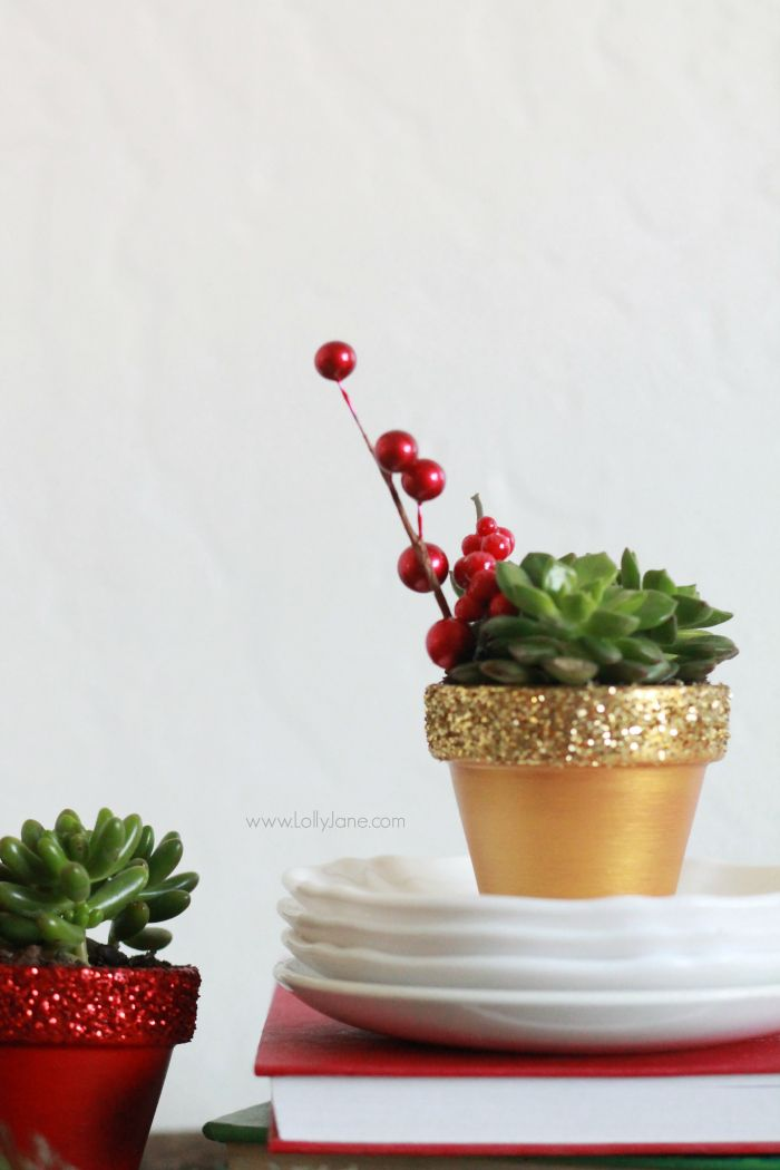 DIY glitter succulents   Easy Christmas decor idea, painted pots with glitter tops.