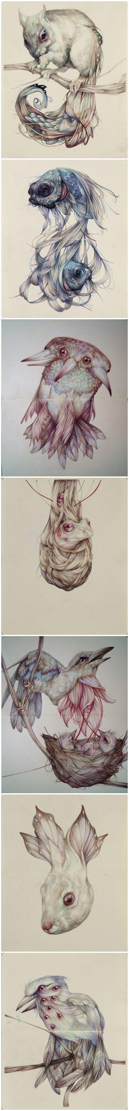 Surrealistic Animal Creatures by Marco Mezzoni on Tumblr.