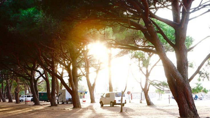 Algajola, camping_de_la_plage, Campingplatz auf Korsika