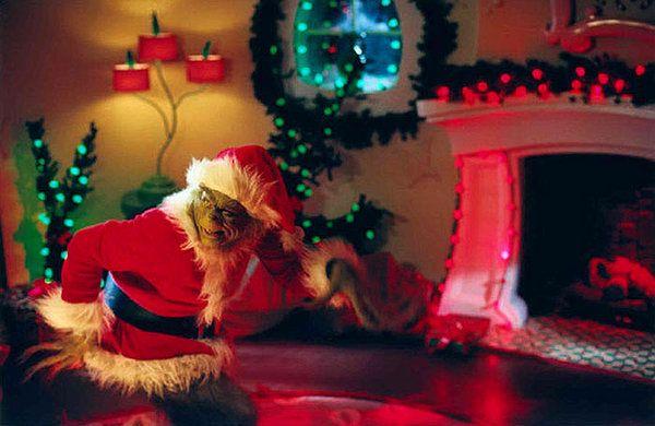How the Grinch Stole Christmas Photos | CHRISTMAS!!!! | Pinterest ...