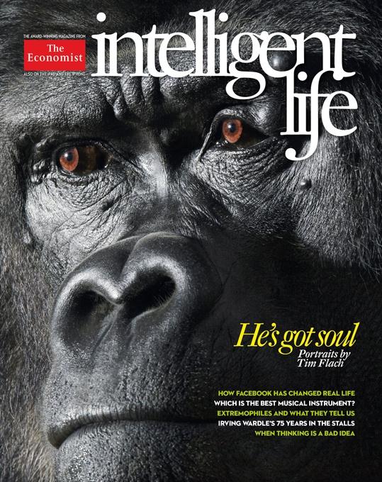 Intelligent Life - The Economist: Wild, Animals, Timflach, Tim Flach, Gorilla, Animal Portraits, Monkey, Photography, Human