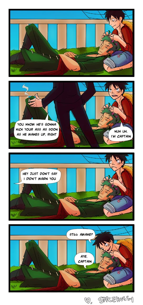 Zoro and Luffy, the best nakamaship ever