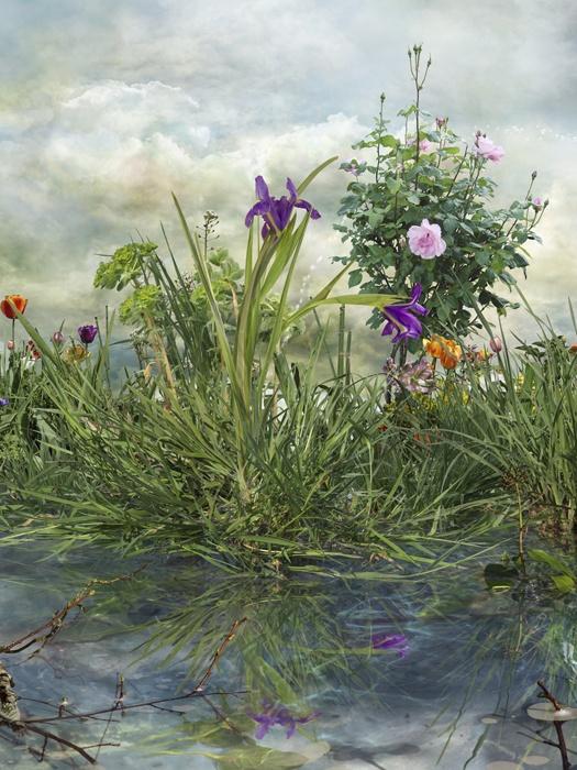 Fotografía nº 1 de la serie 'Alegría en el jardín'. 2011