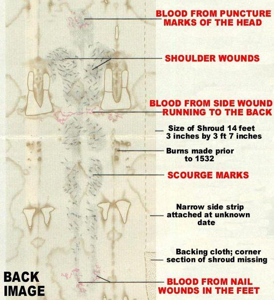 Résultats de recherche d'images pour «Holy Shroud wound right shoulder»