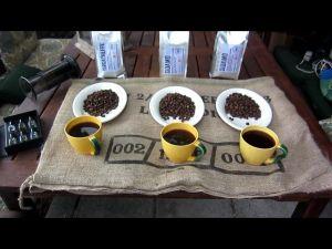 Tasteing Øristeriets Etiopian sampler pack.  Yirgacheffe Misty Valley. Sidamo Wotona Bultuma. Sidamo Suke Quto