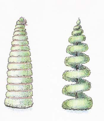 Форма Штопор - для создания используются те же приемы, что и при формировании Спирали, только лента обматывается под прямым углом к стволу.