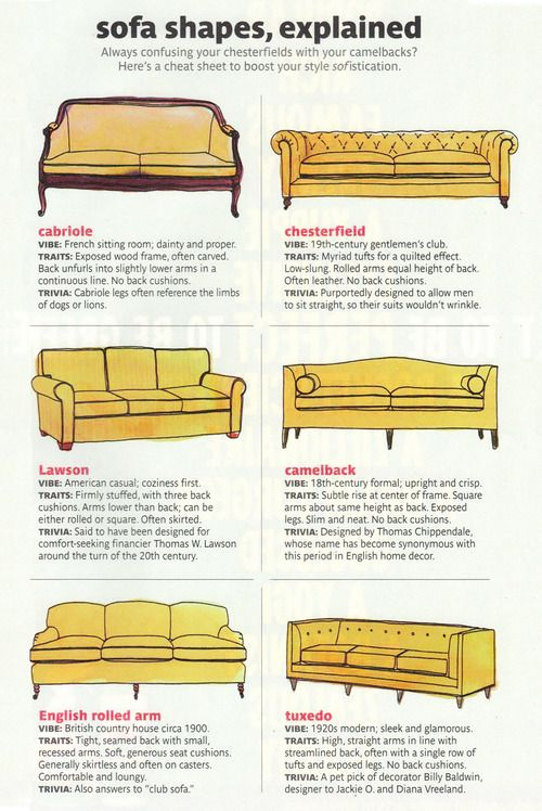 Sofa Shapes Explained An Infographic Infographics