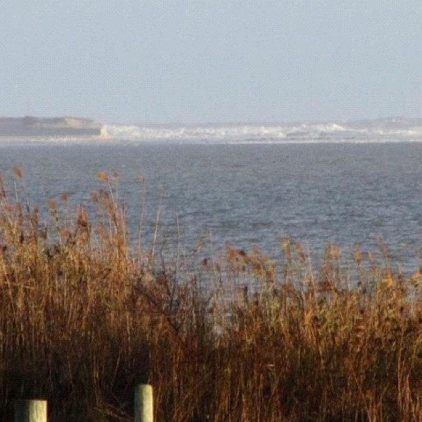 """east moriches singles over 50 A hamlet on the south shore of suffolk county with a small-town feel and  """"we  wanted to be nearer the water,"""" said ms burgess, 50, who had been living   center moriches has become less rural and more residential in recent  the  median sales price for single-family homes for the 12 months ending."""