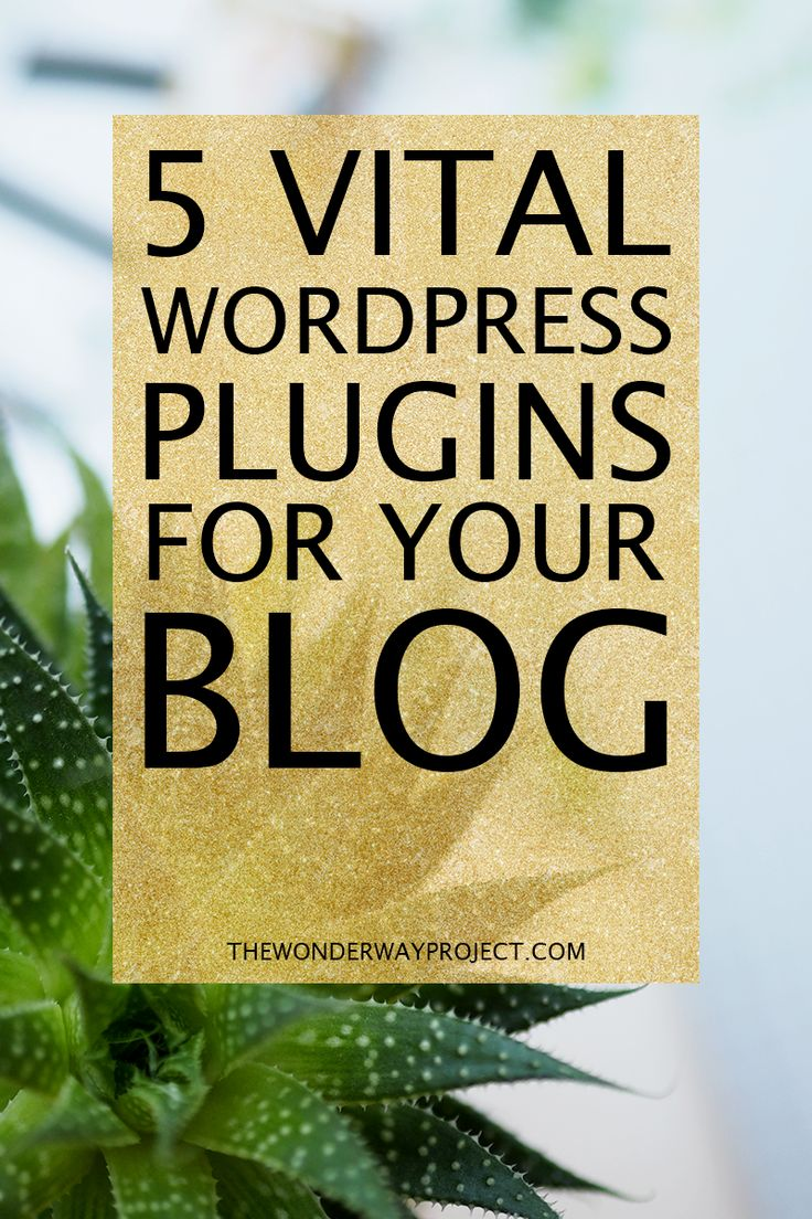 5 VITAL WORDPRESS PLUGINS FOR YOUR BLOG! See the 5 great basic WordPress plugins no one should have to live without. Yes, they're all free! ---> Click through to the blog to read the post!
