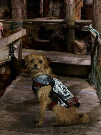 Dude As Dude The Talking Dog In Descendants 2