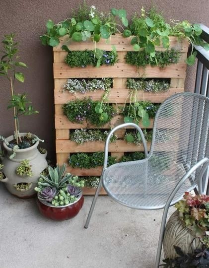 upright herb garden made from a pallet. very clever! how to keep dirt+ from spilling out of bottom when watering though (roof flashing or gutters with holes drilled???)