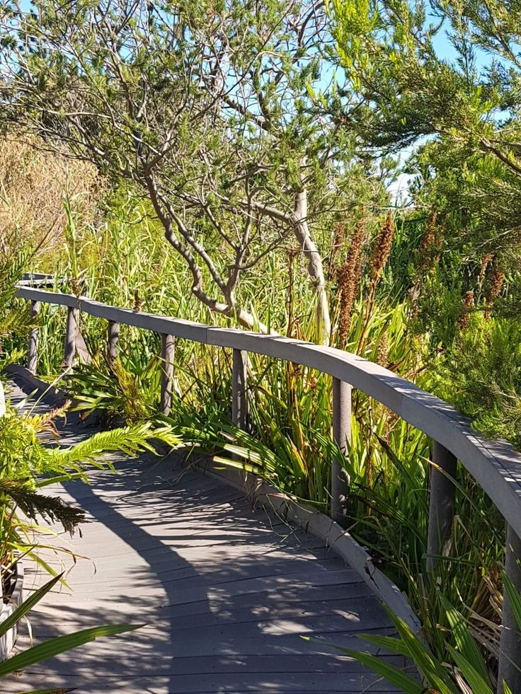 Harold Porter botanical gardens in Betty's Bay - Western Cape, South Africa.