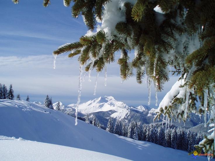 Joli paysage hivernal merci à http://www.visoflora.com/
