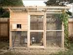 $29.95 Building Plans for chicken coop