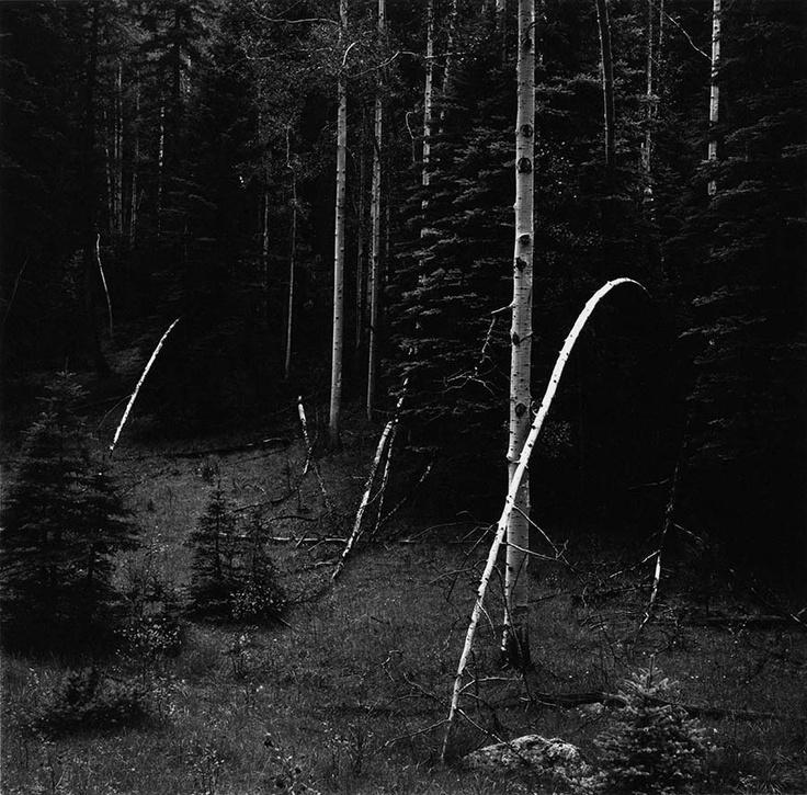 Wyoming 1971 © Kenneth Josephson