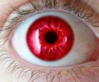 ¿Sabías por qué... Algunas veces salen los ojos rojos al tirar una foto con flash?   ¿Sabías que o por qué?... EXPLICALIA te lo cuenta...!