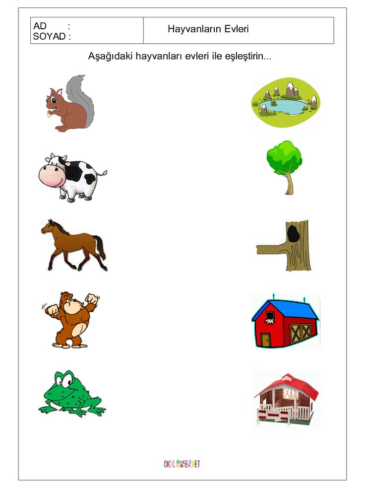 Free Printable Matching Animals To Their Home Worksheet 2