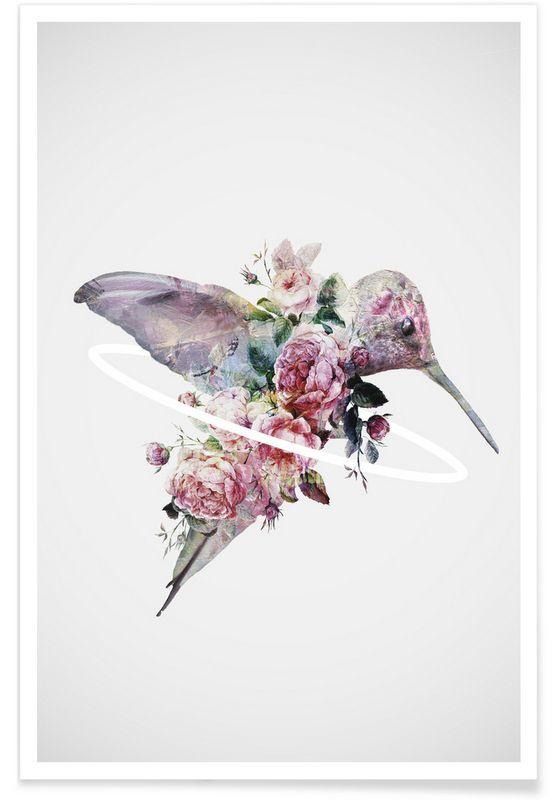 Kolibri - Dániel Taylor - Premium Poster