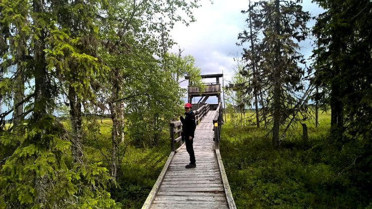 NEW! This summer you can book guided day tours to the Pyhä-Luosto National Park as individual activities. Each weekday a new topic. Price:  70€/person, children up to 12yrs 49€/person. Also available 3-day and 6-day packages with three or five day tours and accommodation with half-pension.