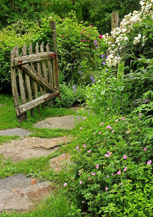 I could walk through this garden gate every day..... I think it leads to a secret garden with a hammock.