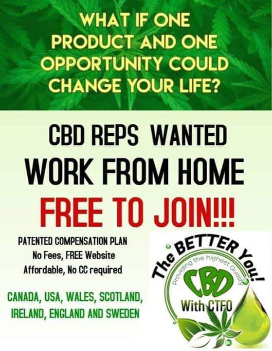Pin By Siguta Cerina On Ctfo Pinterest Work From Home Opportunities Join And Based Business