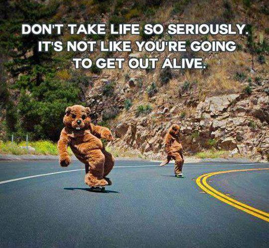 Don't Take Life So Seriously