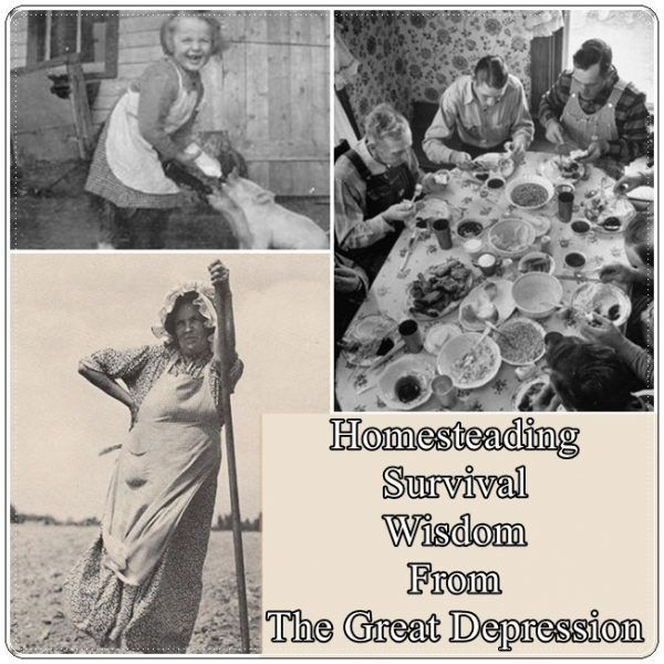 Homesteading Survival Wisdom From The Great Depression Homesteading  - The Homestead Survival .Com