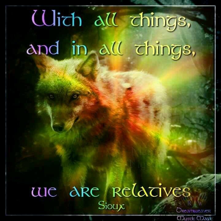 FB Mystic Magic. Native American