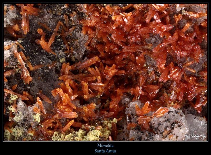 Chromian Mimetite, Santa Ana Mine (Chapacase Mine), Tocopilla District, Tocopilla Province, Antofagasta Region, Chile.   Fov 4,75 mm