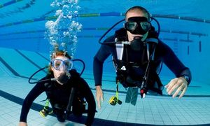 Groupon - Discover Scuba Diving Course for One or Two at Aquarius Scuba Diving Centre (Up to 66% Off) in Toronto. Groupon deal price: C$49