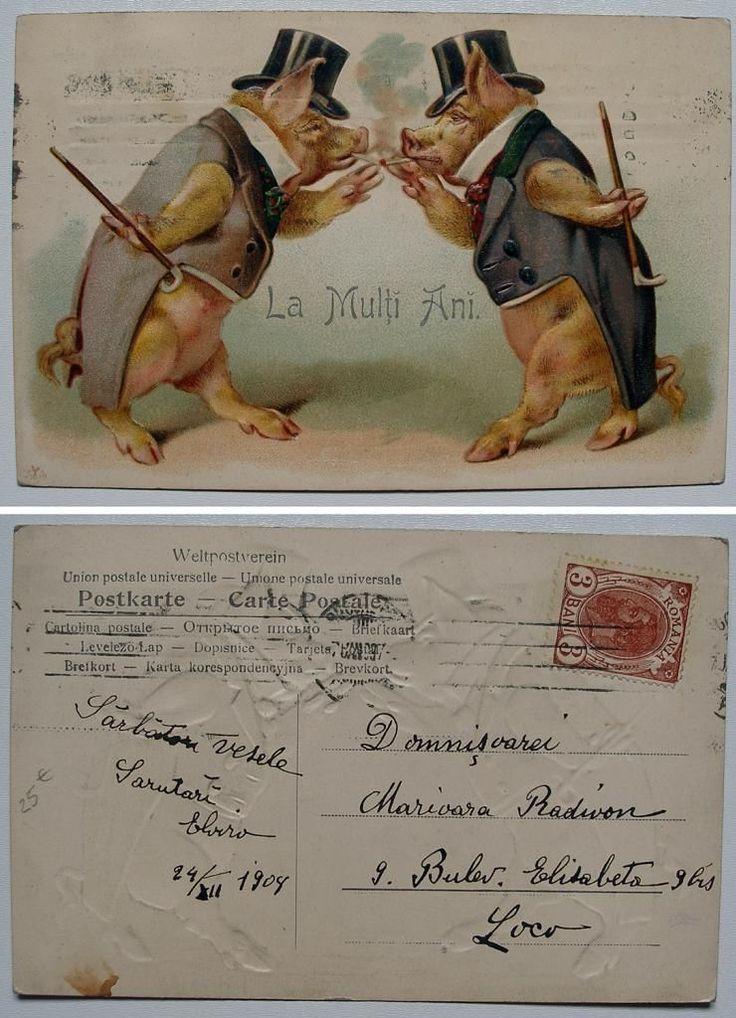 R175 Romania 1908 Vintage Poscard Embossed Cigar Smoking Pigs New Year Greetings | eBay