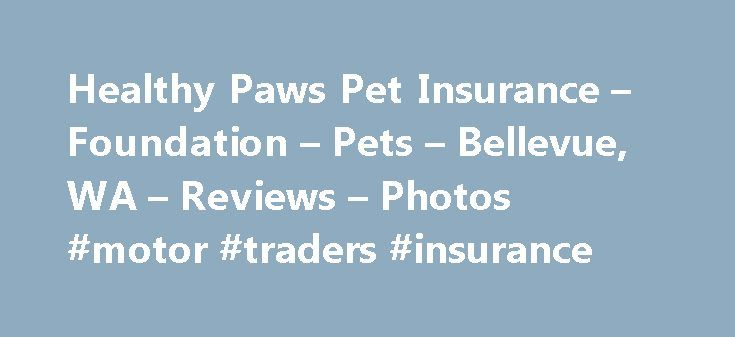 Healthy Paws Pet Insurance – Foundation – Pets – Bellevue, WA – Reviews – Photos #motor #traders #insurance http://insurance.remmont.com/healthy-paws-pet-insurance-foundation-pets-bellevue-wa-reviews-photos-motor-traders-insurance/  #pet insurance reviews # Recommended Reviews I am extremely pleased with my pet insurance with Healthy Paws. Never in my life have I experienced customer service like Healthy Paws;… Read More I am extremely pleased with my pet insurance with Healthy Paws. Never…