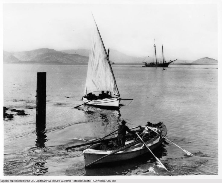 17 best images about latin sail others 2 on pinterest for San francisco bay fishing