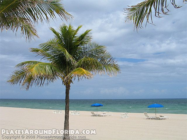 cannot wait to be here in person:) fort lauderdale beach