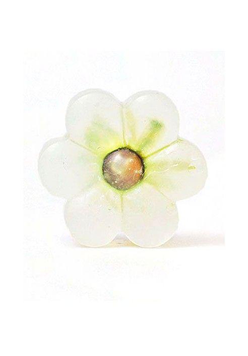Naturalne kwiatek- rumianek/Natural flower- camomile