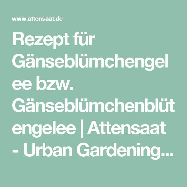 Rezept für Gänseblümchengelee bzw. Gänseblümchenblütengelee | Attensaat - Urban Gardening, Guerilla Gardening, Nachhaltigkeit