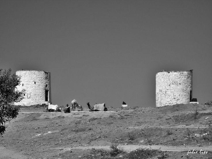 Black & White in Windmills..