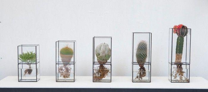 """暮らしの中のスタンダードとして定着しつつある植物。今回は、近ごろのボタニカルブームの中で最注目株であるテラリウムを特集。新進気鋭のデザインユニット「テラ」の個性的なサボテンテラリウム、インテリアデザイナーと造園家のコラボレーションで開発されたボトルに閉じ込めた植物、土壌を観賞しながら栽培できるクリアプランター「ボスケキューブ」、デンマーク王室御用達ブランド「ホルムガード」のヒヤシンスベースなど、植物を鑑賞しながら成長を楽しめるアイテムをピックアップ。10〜11月は水耕栽培を始めるのにベストなシーズン、この機会にトレンドのボタニカルライフを始めてみては。 《10¹² TERRA》 サボテンや多肉植物を水耕栽培する、テラリウム「Hydro(ハイドロ)」。ガラス製なので、植物の""""根""""を観察しながら育てることができ、植物が宙に浮いているかのようなアート感覚を楽しめる。ステンドグラスの技法で制作された繊細かつミニマルなデザインで、ハンダ付けによるディティールも魅力。容器は上下に分解でき、上部に植物を、下部に水を入れる仕組み。新感覚のテラリウムやフラワーベースを手掛ける10¹²…"""