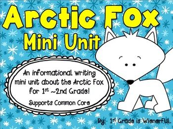 ARCTIC FOX ~ INFORMATIONAL WRITING MINI UNIT FOR 1ST-2ND GRADE
