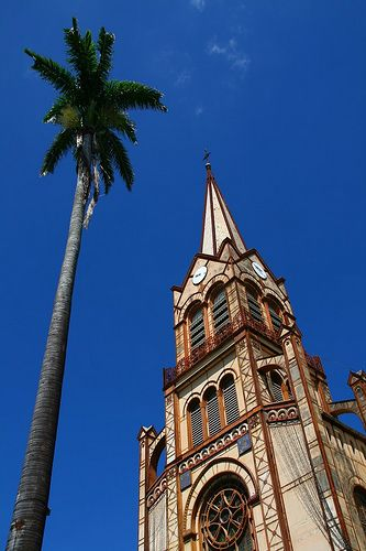 Cathedral and Palm tree - Fort de France