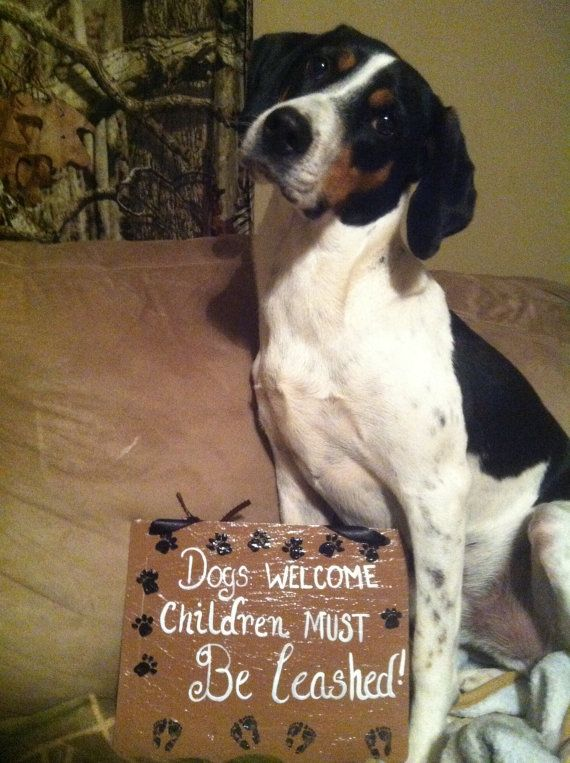 Home decor pet signs pet sayings welcome signs dog for Dog related home decor