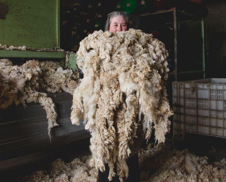 Burel: 100% wool Water resistant Windproof