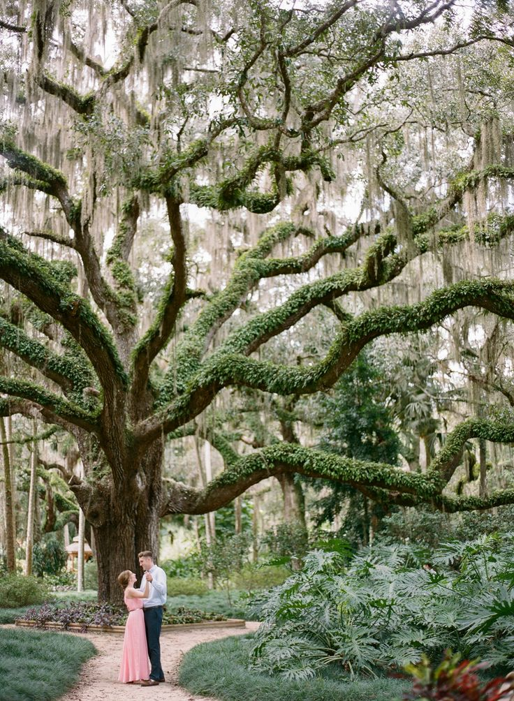 Jacksonville Engagement Photography At The Washington Oaks Garden State Park
