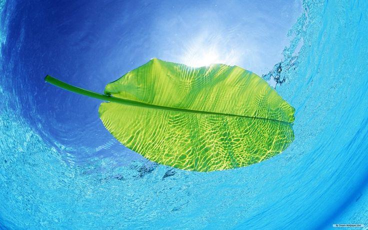 carta da parati, natura, cielo, blu, acqua limpida, File vettoriale